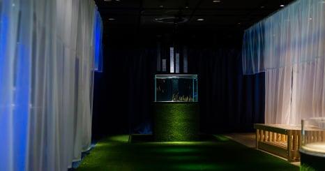 Dive into concept, design and aquatic life at Loftwork's  latest exhibit for Osaka Aquarium Kaiyukan.