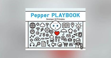 Pepperデベロッパーの体験向上を目指したUX5原則を策定