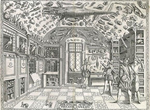 """ルネサンス期の蒐集家たちに学ぶ""""未知""""との付き合い方"""