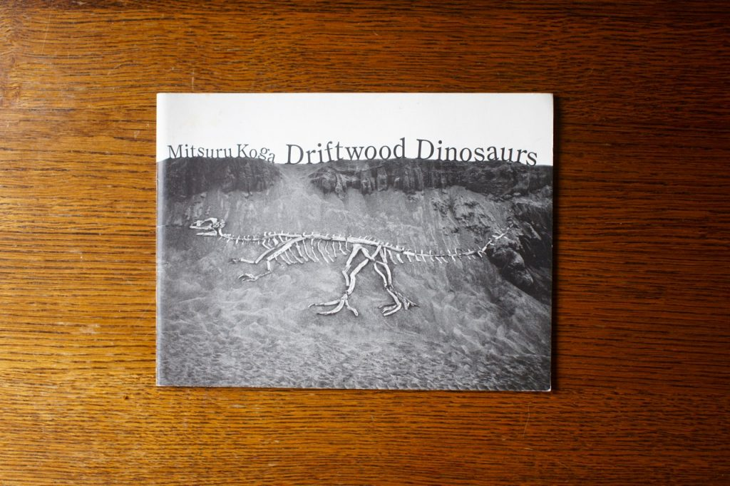 Driftwood Dinosaurs / 古賀充