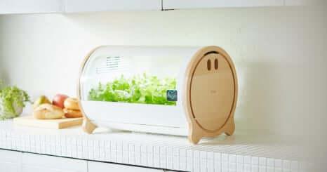如何獲得使用者觀點來進化原型產品・IoT水耕栽培機「foop」