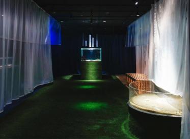 世界級大型的水族館「海遊館」與設計師的共同創意<br /> 特別展覽「夢見住在海裡~魚和我的不可思議之家」開展