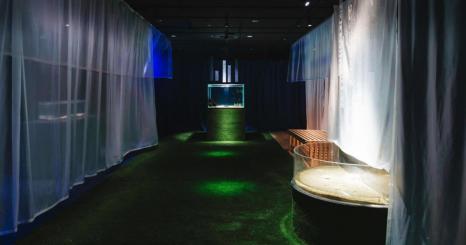 世界級大型的水族館「海遊館」與設計師的共同創意 特別展覽「夢見住在海裡~魚和我的不可思議之家」開展